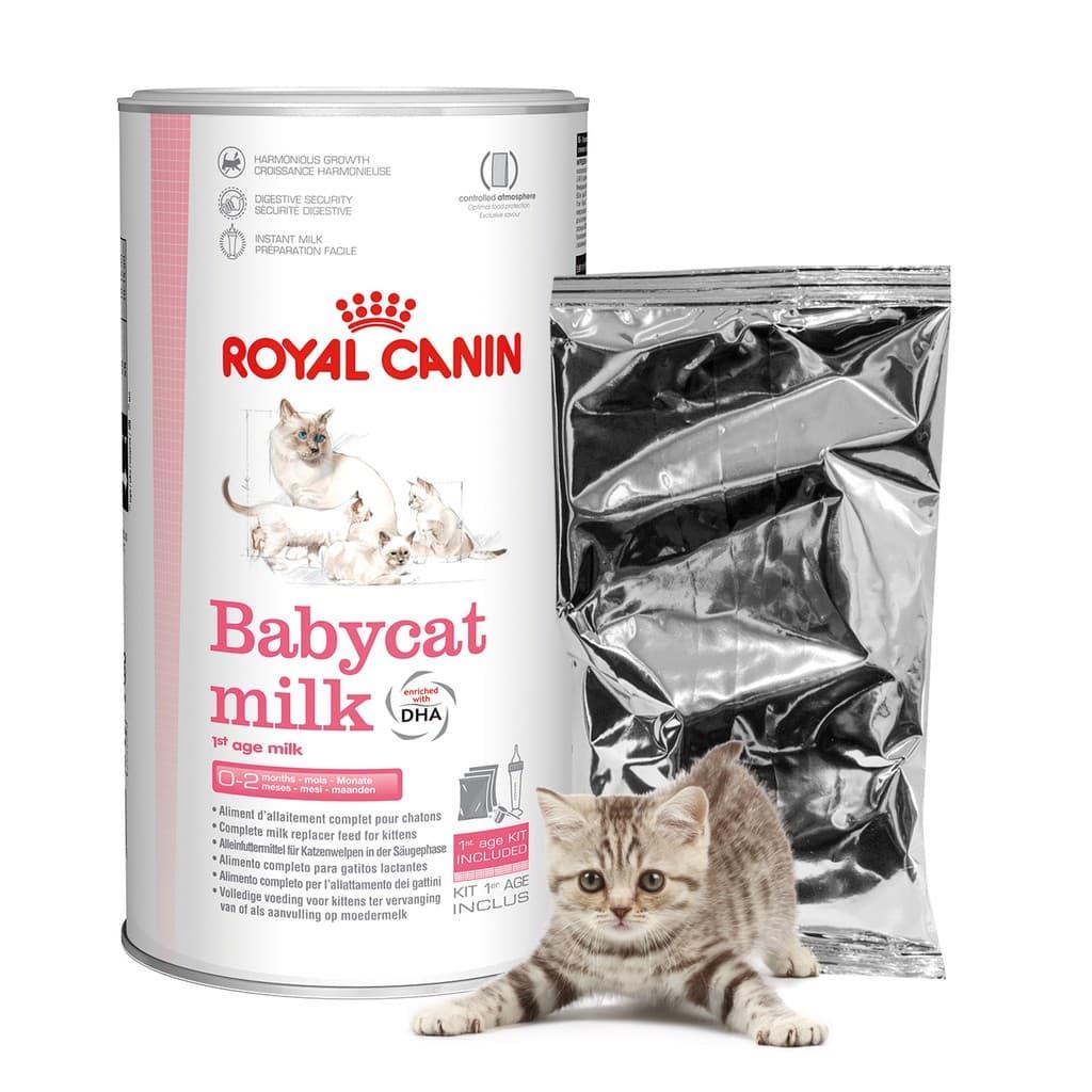 Royal-Canin-Babycat-Milk